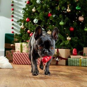 好孩子的礼物该怎么选美好生活研究所 -- 宠物知多少之毛孩子的圣诞礼物清单