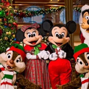 As low as $672Disney's Very Merrytime Bahamian Cruises