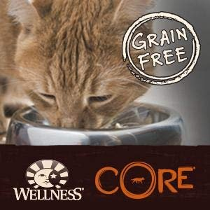 Today Only: 30%  OFFWellness Wet Cat Food One Day Sale