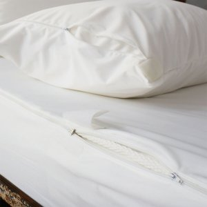 防水防虫枕头+床垫