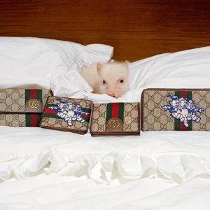 包包美鞋和配饰 折扣双手给你递Gucci 哪家买最划算?我们帮你数一数 近期好折全汇总