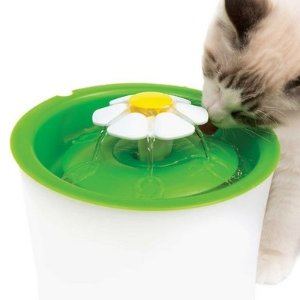 Up to 41% OffCatit Flower Pet Fountain and Filter on Sale @ Chewy