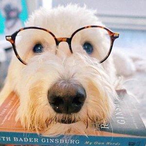 50% OffTimeToShade Glasses Frames