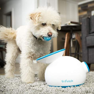 $15 off $65+iFetch Dog Toys on Sale via Buy Online & Pickup in-Store