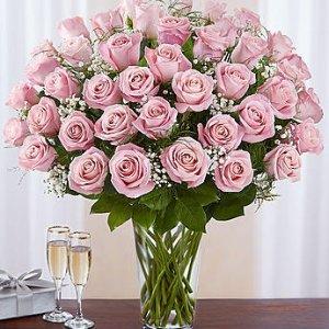 全场额外9折1800flowers 官网全场鲜花热卖 鲜花表心意 送美丽祝福