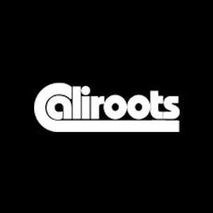 低至1折 3欧收Levi's短袖Caliroots  运动潮牌大促 收Nike、Adidas、Puma明星同款