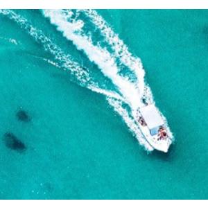 Cruises As low as $338 + Extra BonusAvoya Travel 2019 Cyber Week Sale