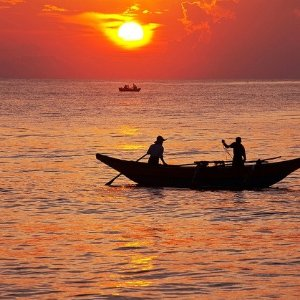 From $14999-Day Guided Tour of Sri Lanka with Hotels and Air