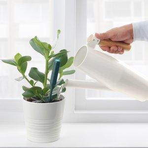 $4.99 新品上市CHILIPULVER 植物浇水提示器 种植小白福音