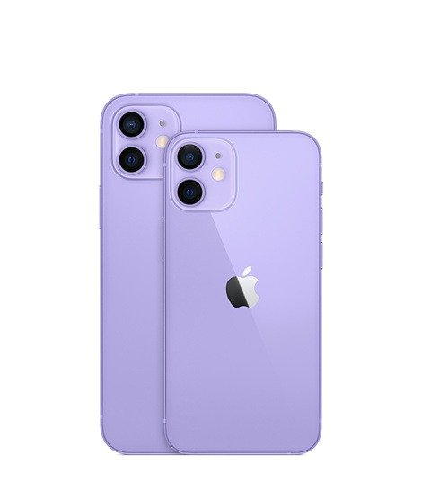iPhone 12 and iPhone 12 mini 紫色