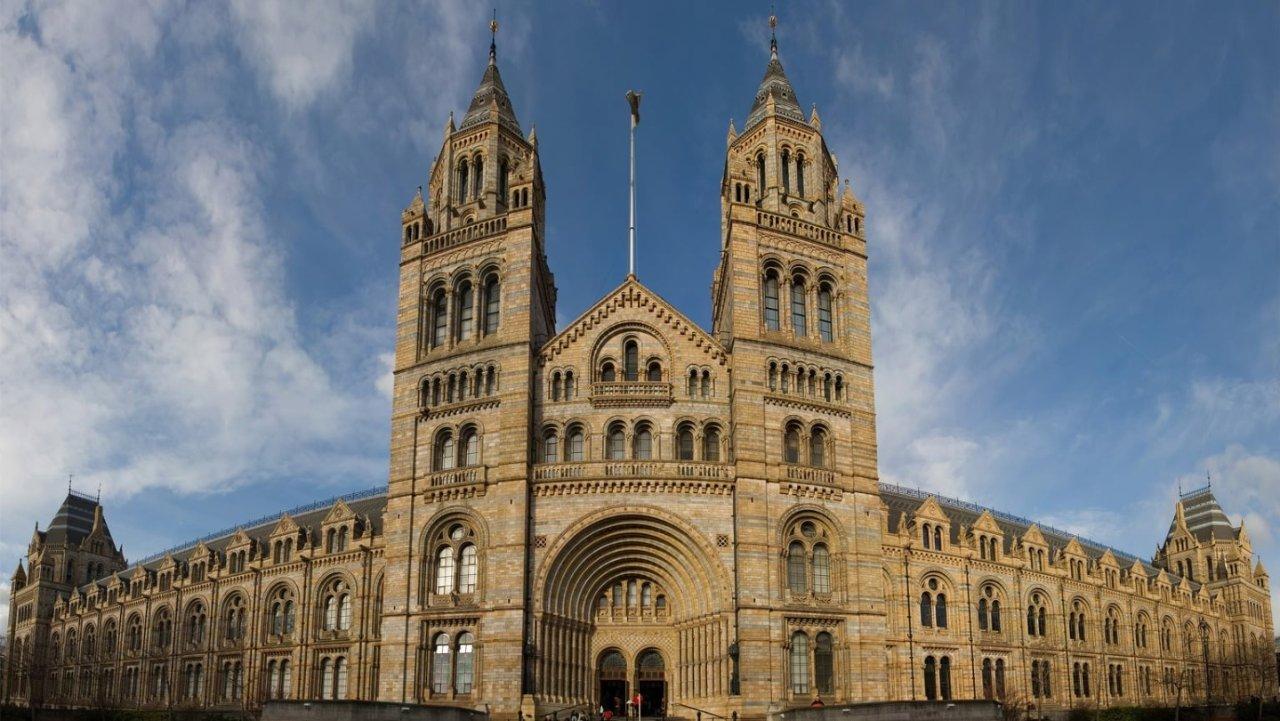 伦敦自然历史博物馆 | 开放时间/门票预订/必看展品全指南!附在线云游攻略