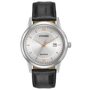 Citizen Eco-Drive Men's Stainless Steel Watch with Date, AW1236-03A