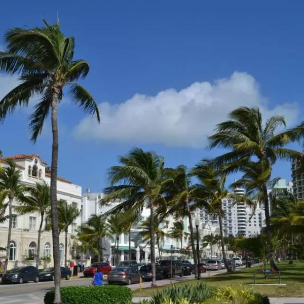 迈阿密酒店早订特惠