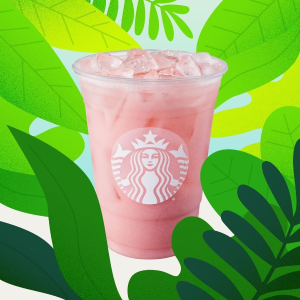 enjoy 50% off any drinkStarbucks Limited Time Promotion