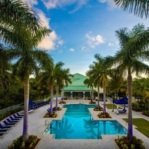 From $75Select Miami Hotels @ BookingBuddy