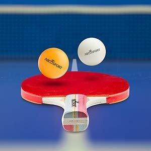 $19.94 + 包邮Abco Sport 乒乓球套装促销 含球拍4只,乒乓球6个