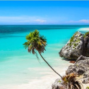 From $234 RTLos Angeles to Cancun MX  Nonstop Airfare