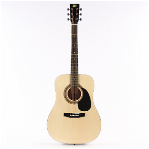 Rogue RA-090 Dreadnought Acoustic Guitar