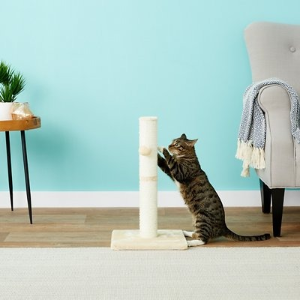 20% OffChewy Selected Cat Trees & Condos on Sale