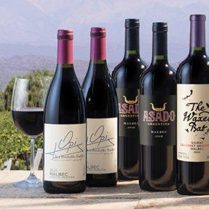 WSJwine new 12 bottles Malbec Offers