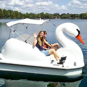 One 30-minute swan-boat rentalCity of Orlando