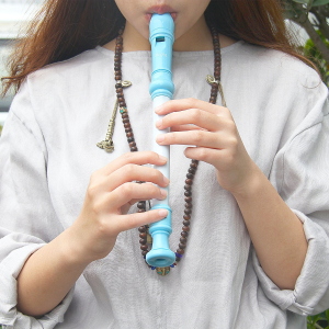 $7(原价$19.45)Mugig 8孔竖笛高音笛带清洁棒