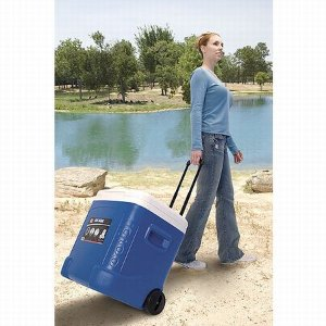 $24 Igloo Ice Cube Roller Cooler (60-Quart, Ocean Blue)