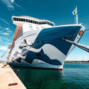 内舱票$619/人加勒比公主游轮 7晚东加勒比海游 佛州往返 含私人珊瑚礁岛游玩