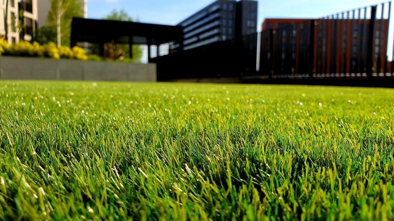 花园庭院除杂草的好办法!物理除草、化学除草、庭院改造