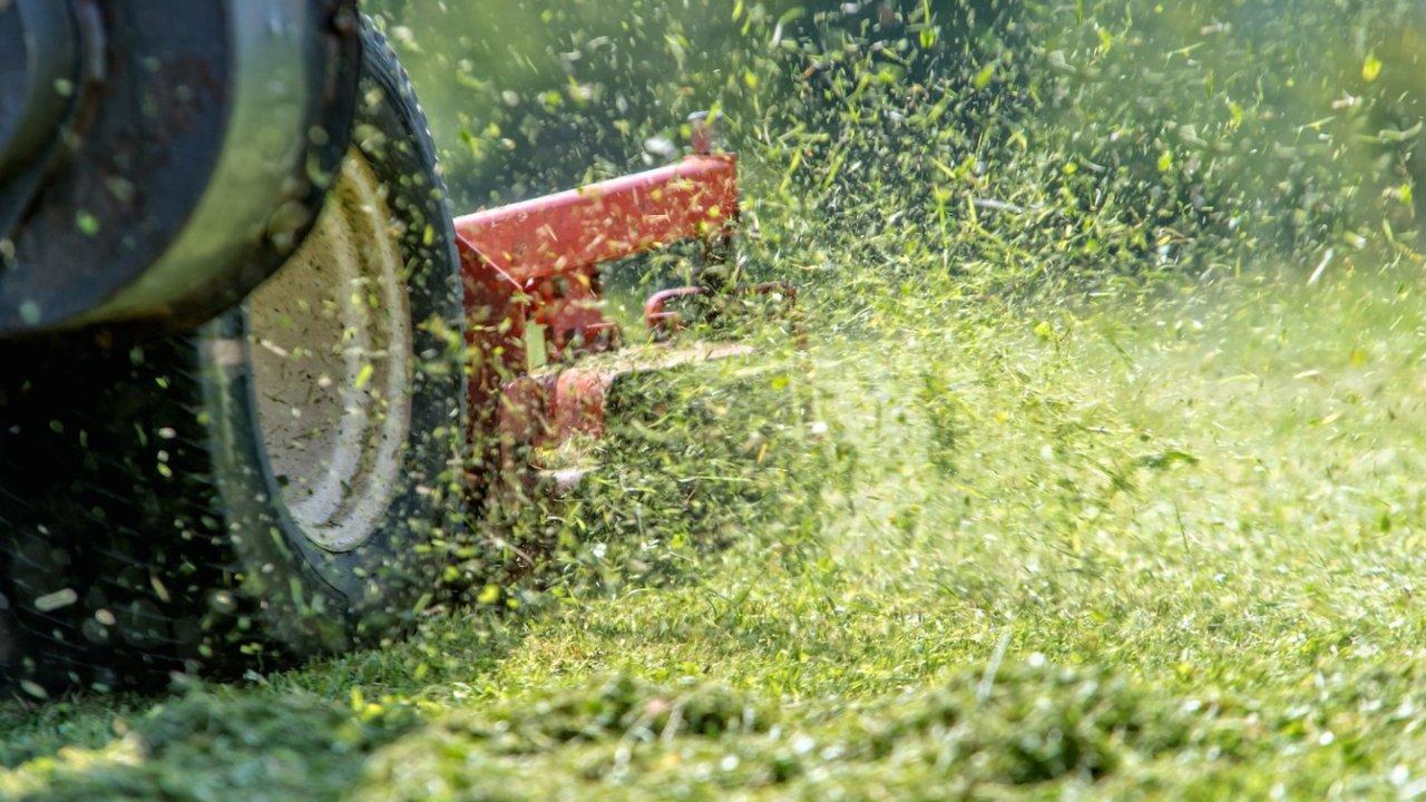 割草机选购攻略   汽油割草机、电动割草机推荐 2021