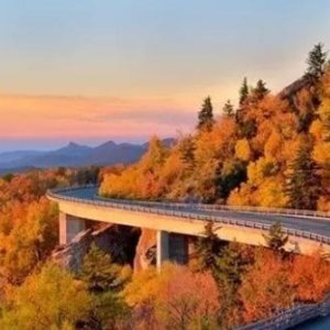 As low as $117Great Smoky Mountains 4-Day Tour From New York