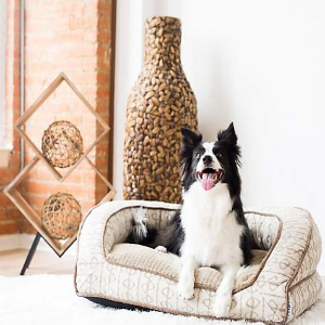 Up to 25% OffLa-Z-Boy Selected Dog Beds on Sale