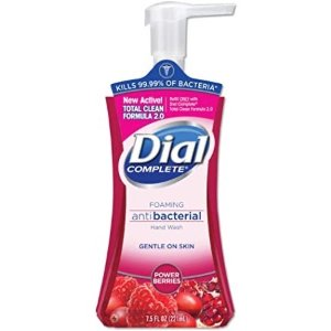 Dial Complete 红莓味抗菌泡沫洗手液