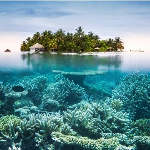 Starting from $18998-Day Maldives Vacation with Hotels and Air