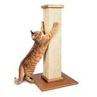 低至6折 + 额外8折Petco 精选猫抓柱、猫抓板促销热卖