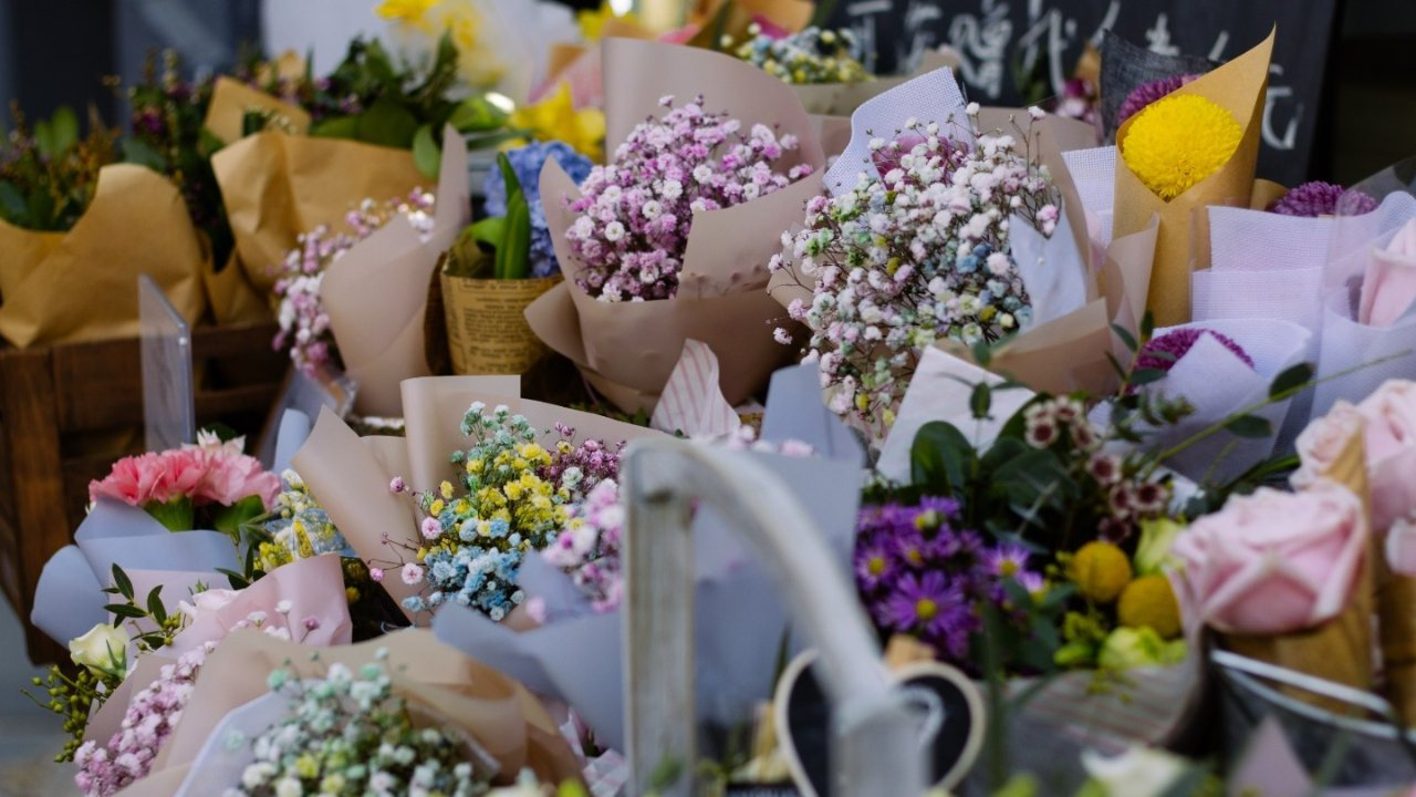 在法国如何网上订购花花草草?法国鲜花&绿植速递大盘点!还可以定时配送哦~