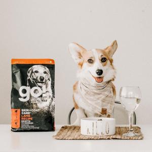 15% OffGo! Selected Pet Food on Sale