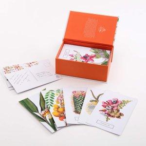 $10.54New York Botanical Garden植物花卉插画明信片100张