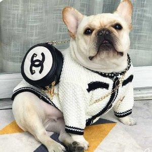 3折起 £225收BBR牵引绳Ssense 宠物大牌配饰服装专区 进来见识狗活得都比我富贵