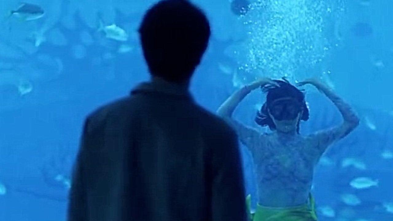 伯明翰七夕必打卡|我不养鱼,我只养你~快来伯明翰水族馆过一个浪漫七夕~