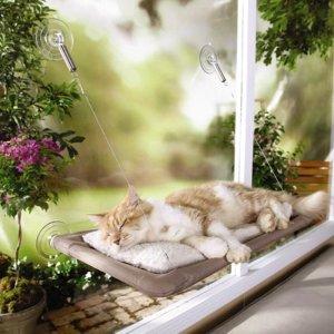$15.19 (原价$25.99)史低价:Oster Professional 猫咪玻璃吊床