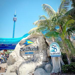 一日票$59.99 + 第二天免费入园圣地亚哥海洋世界 SeaWorld 门票大促延长