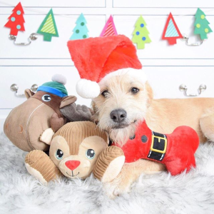 25% OffHoliday Tails Pet Products on Sale