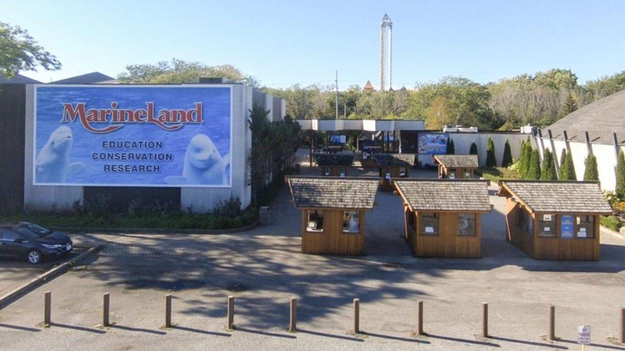 大瀑布Marineland游玩攻略 | 适合低龄孩子的一站式游乐园