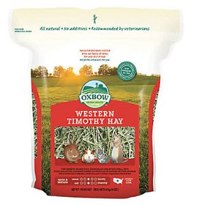 Oxbow Western Timothy Hay for Small Pets | PetSmart