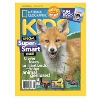 儿童版年刊订阅 共10期