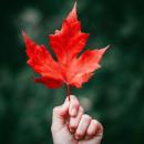 赏枫超强攻略,直逼朋友圈C位加拿大秋季赏枫图鉴