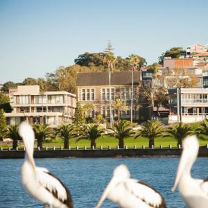 团购价$152.1起(原价$418)Sebel Harbourside Kiama高级海滨酒店 休闲度假首选