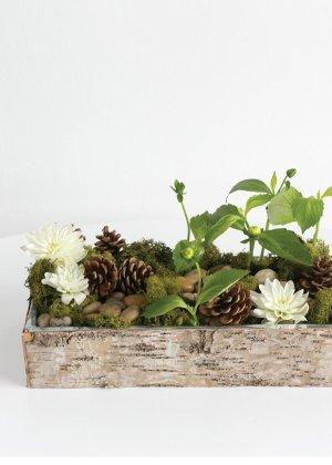 自然风树枝造型盒