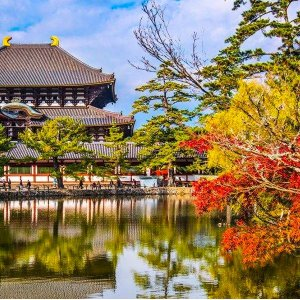 Start From $1599Tokyo to Osaka: 10-Night Japan Trip w/Air, Tours, Train & More